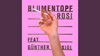 Rosi (Akustikversion / Günther Sigl & Band Version)