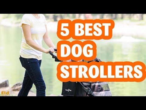 5 Best Dog Strollers in 2019