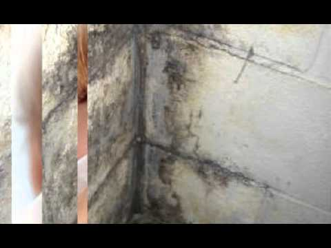 Mold Inspection Manhattan Rentals, Condos and private homes