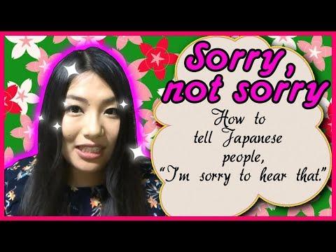 Saki's Japanese Lesson: Sorry, Not Sorry (repost)