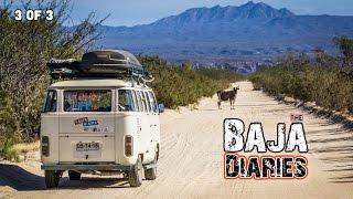 FREE CAMPING & TROUBLE in BAJA CALIFORNIA