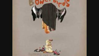 Watch Bowerbirds Hooves video