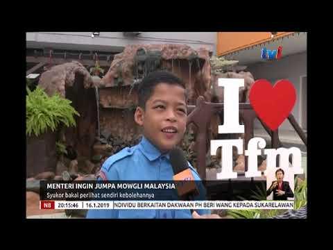 N8 - MENTERI INGIN JUMPA MOWGLI MALAYSIA - SYUKOR BAKAL PERLIHAT SENDIRI KEBOLEHANNYA [16 JAN 2019]