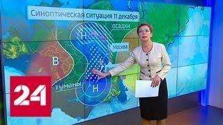 Между снегопадом и оттепелью: зиму лихорадит - Россия 24