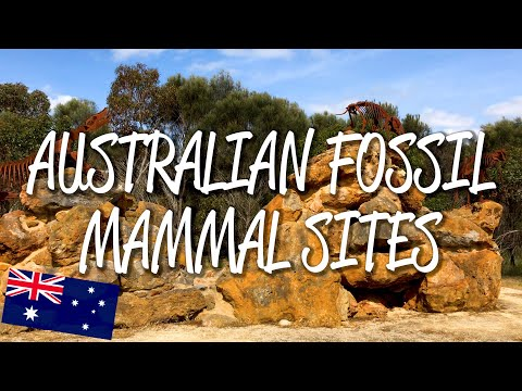 Australian Fossil Mammal Sites - UNESCO World Heritage Site