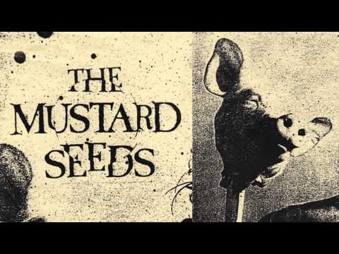 The Mustard Seeds - No More Heroes (Bootleg)