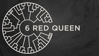 Repeat youtube video Area 11 - Red Queen [Official Lyric Video]