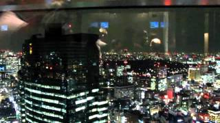 Amazing view of Tokyo from Dentsu building lift