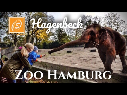 Tierpark Hagenbeck Zoo Hamburg Hamburg Germany Youtube