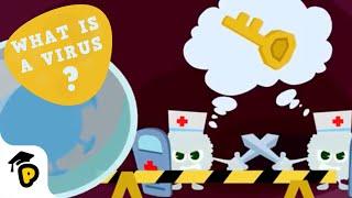 Coronavirus Outbreak   What is a virus?   Kids Learn Cartoon   Dr. Panda TotoTime