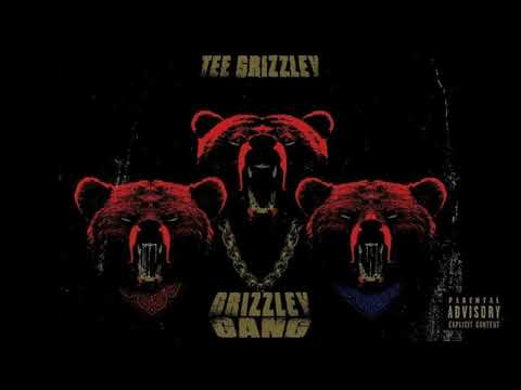 Tee Grizzley - Grizzley Gang (Official)
