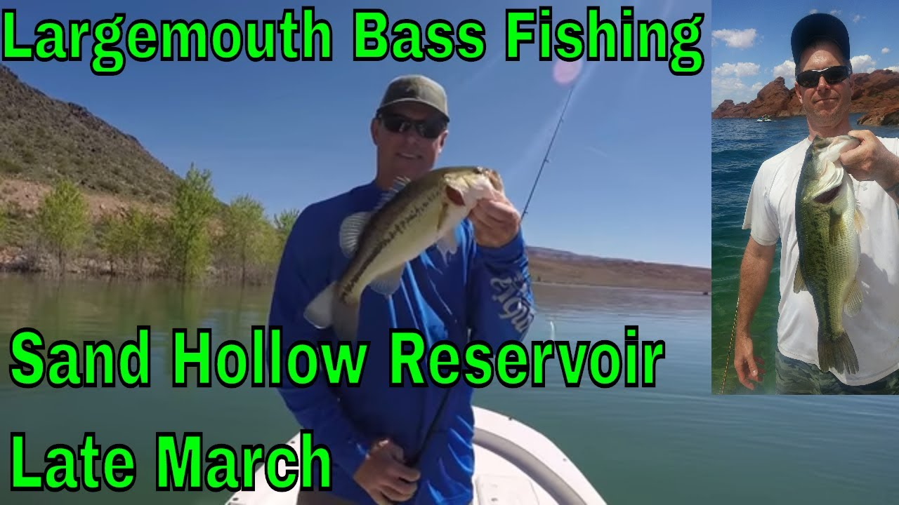Largemouth bass fishing sand hollow reservoir utah for Sand hollow fishing report