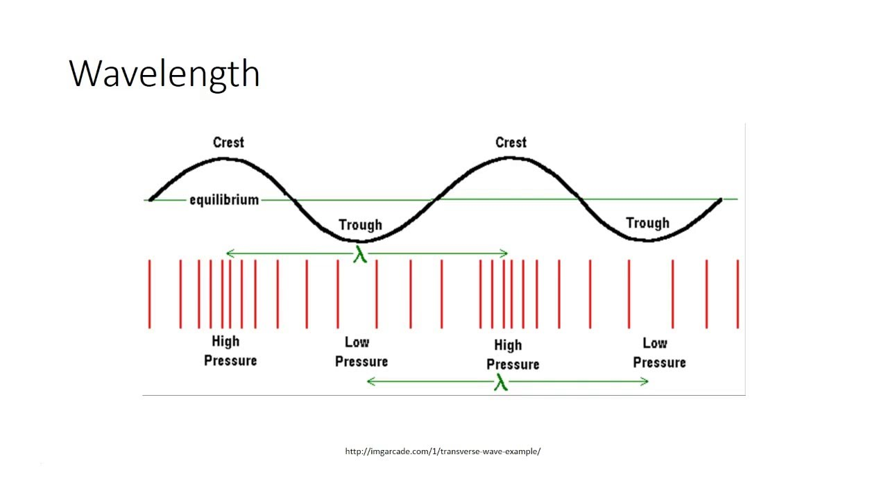 Venn Diagram Of Transverse And Longitudinal Waves Garage Door Opener Schematic Longitude Wiring Schematics Vs Youtube Rh Com Compare Sound