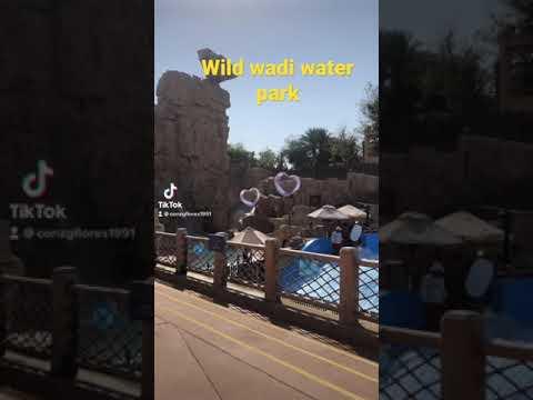 Wild wadi water park dubai 🔥🔥😎