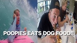 BACKDOOR MODEL SURFING & POOPIES EATS DOG FOOD!