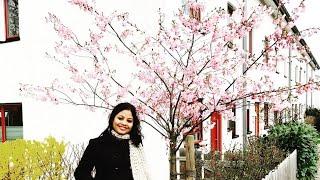 Zehnaseeb karaoke Hasee toh phasee - Manishree Sarmah