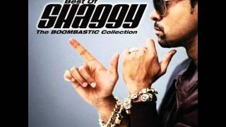 Shaggy feat Akon - What