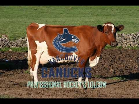 The Vancouver Canucks: Professional Hockey's Lolcow