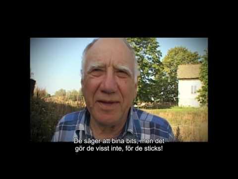 Om Lidingö-i:n (Värsta språket S01E03)