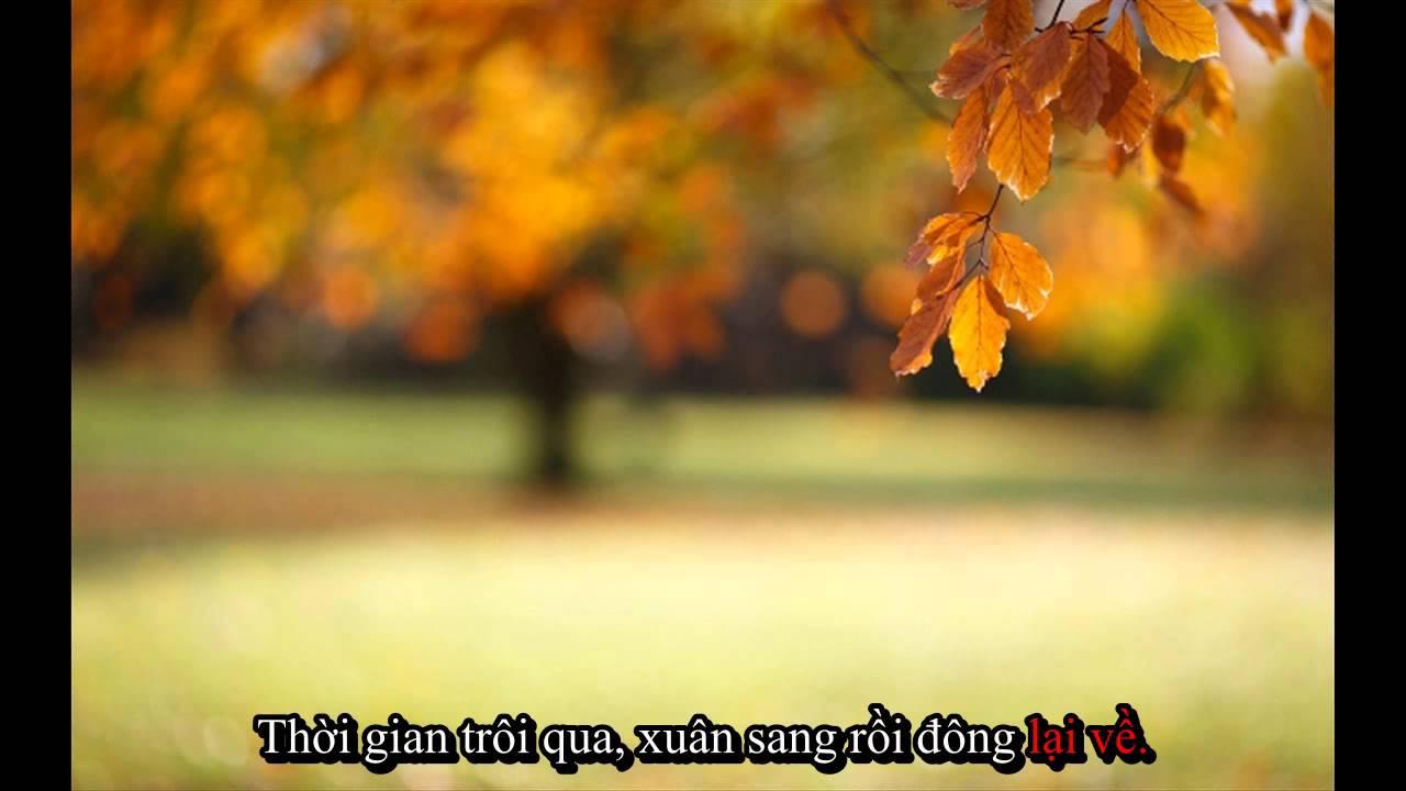 Free Fall Desktop Wallpaper Backgrounds Nơi Hạnh Ph 250 C Mỉm Cười Karaoke Beat Youtube