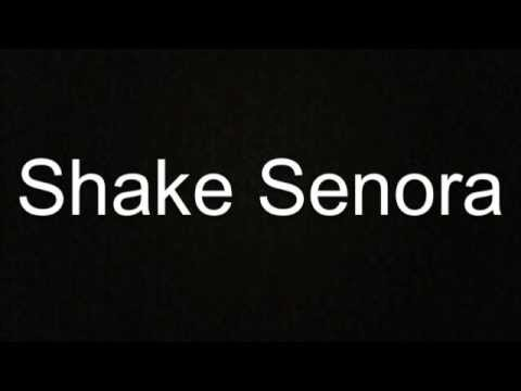 Shake Señora (T-Pain, Sean Paul, Ludacris - Pitbull (with lyrics on screen)