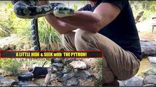 Carpet Python Enrichment by the Pond!
