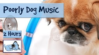2 Hours of music for ill or stressed dogs. Musical Therapy for pets.