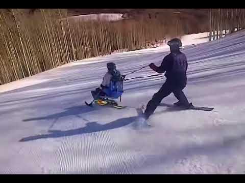 Sit Ski Demo