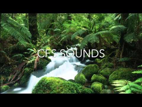 Jonas Blue ft Dakota - Fast Car (Club Mix)