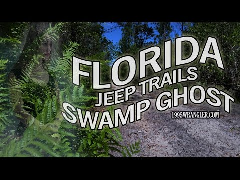 JEEP The SWAMP GHOST Off Road South Of Orlando Sand Trails Off 417 In A 1995 Wrangler.