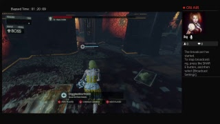 Killing floor 2 with diggles