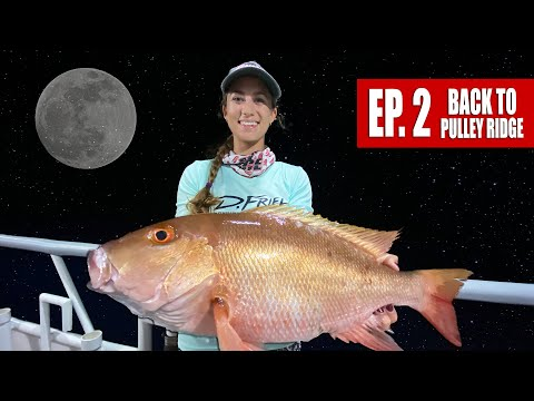 MOONLIGHT MUTTON MADNESS! Night Time Snapper Fishing At Pulley Ridge