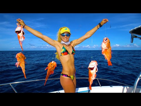 SO EASY It Should be ILLEGAL! Deep Drop in 900' for GUARANTEED Catches! Rosie Catch & Cook