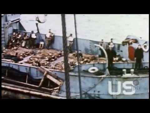 Landing at Omaha Beach: D-Day | World War II Stories