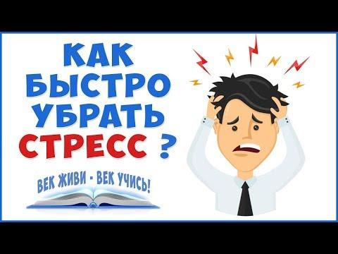 СТРЕСС и болезни. Убрать стресс и убрать болезни!
