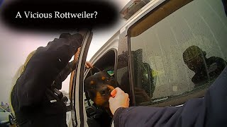 Officers respond to a call about a 'Vicious Rottweiler'