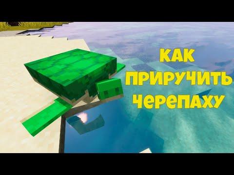 Как Приручить Черепаху в Майнкрафте? Черепахи в Minecraft