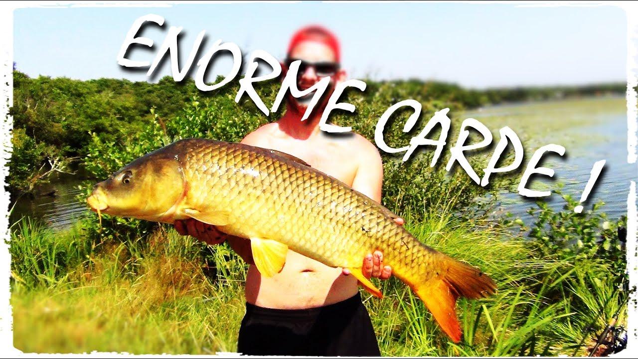 P che de la carpe un poisson de 10 kg youtube for Poisson carpe
