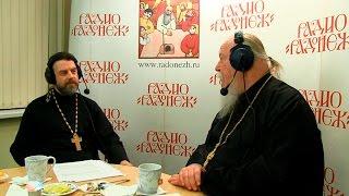Радио «Радонеж». Протоиерей Димитрий Смирнов. Видеозапись прямого эфира от 2016.11.26