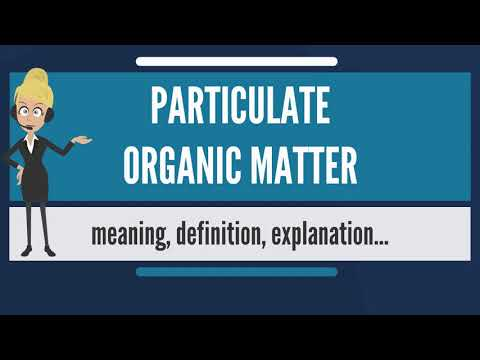 What is PARTICULATE ORGANIC MATTER? What does PARTICULATE ORGANIC MATTER mean?
