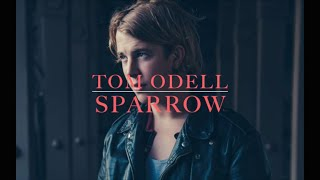 Tom Odell - Sparrow (lyrics)