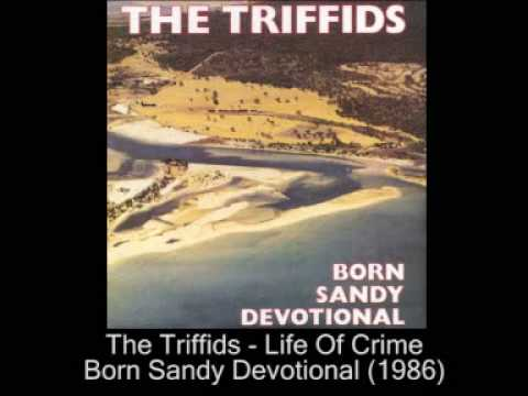 The Triffids - Life Of Crime (1986)
