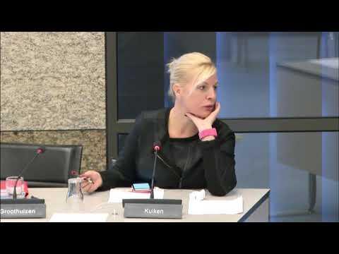 Maffia in Nederland Georganiseerde criminaliteit/ondermijning
