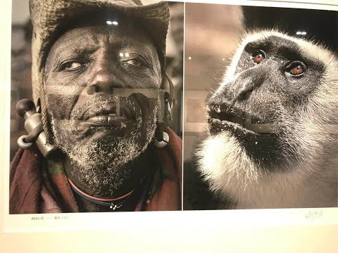 Download Youtube: Museum In China Portrays Black People as ANIMALS