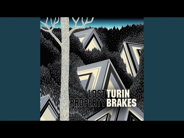save you turin brakes