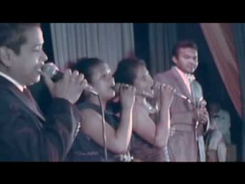 Re roy - Nini - Sitraka - Nanie - Lilie (RAMAROSON Wilson)