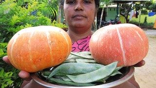 PUMPKIN And Broad Beans Recipe Cooking in My Village | Prepared By My Mummy | VILLAGE FOOD