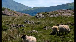 Play Shepherd Lad