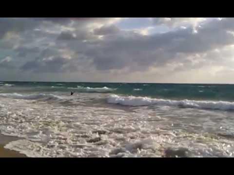 Surf fishing off delray beach florida 4 7 12 youtube for Delray beach fishing