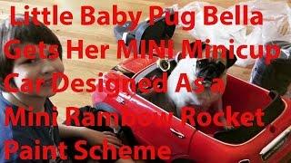 Little Baby Pug Bella Gets Her Mini Minicup Car Designed As A Mini Rainbow Rocket Paint Scheme